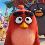 Prázdninování - Angry Birds ve filmu 2